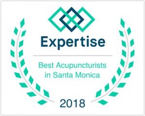 Dr Nalini Chilkov Best Acupuncture Santa Monica California